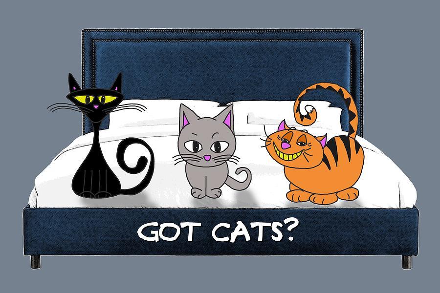 Cats Digital Art - If You Have Cats by John Haldane