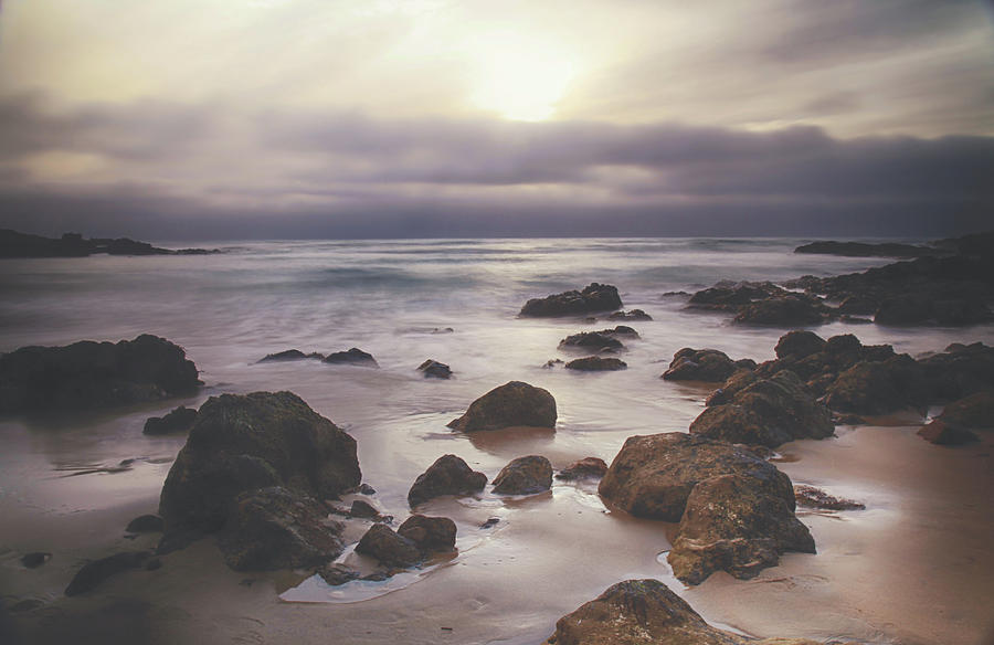 Pescadero Photograph - If Youre Feeling Low by Laurie Search