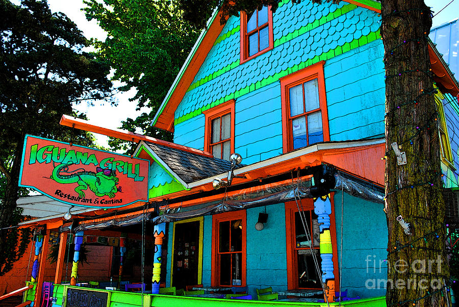 Rehoboth Painting - Iguana Grill by Jost Houk