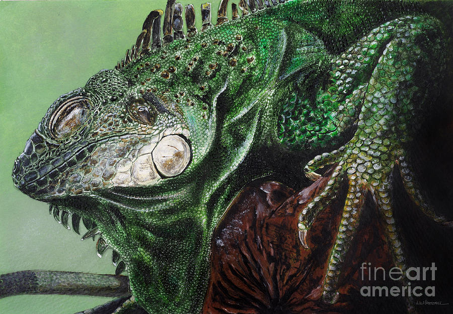 Lizard Painting - Iguana by Monica Carrell