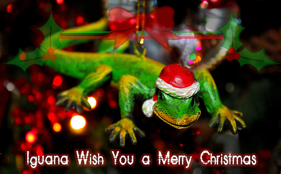 christmas photograph iguana wish you a merry christmas by susan vineyard