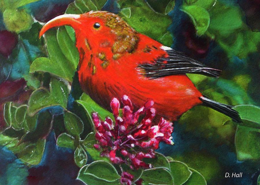 Iiwi Painting - IIwi Scarlet Honeycreeper Bird #339 by Donald k Hall