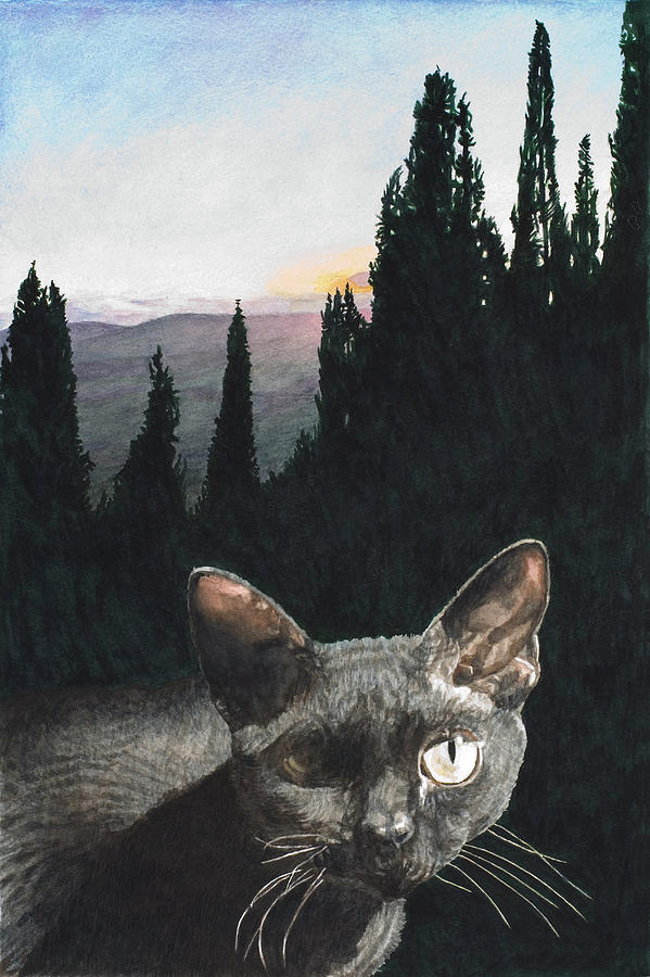 Cat Painting - il Magnifico by Perry Woodfin