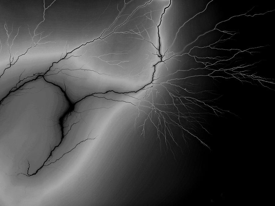 Nature Photograph - Illumination by Tom Druin