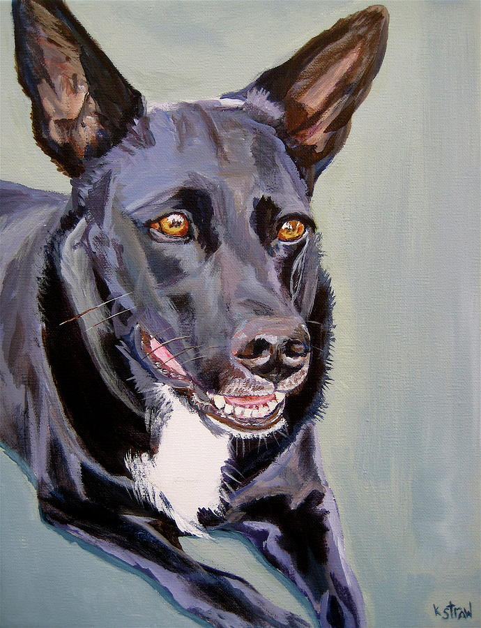 Cattle Dog Painting - Im All Ears by Kellie Straw