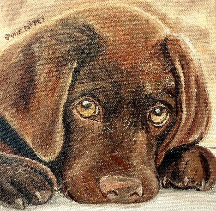 I M Sorry Chocolate Lab Puppy Painting By Julie Brugh Riffey