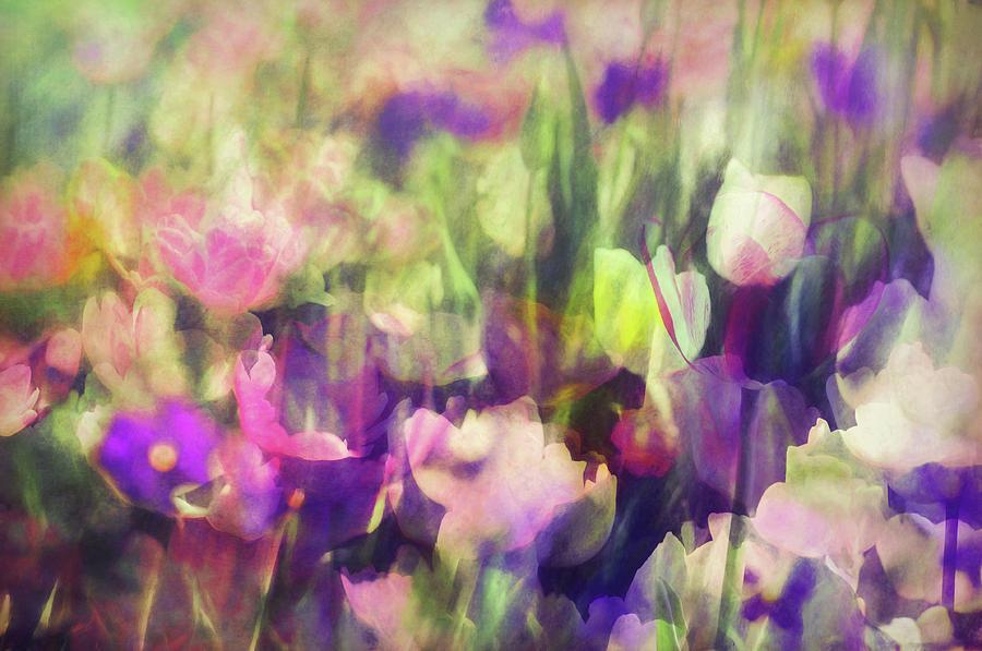 Flower Photograph - Impressionist Floral Xxxvi by Tina Baxter