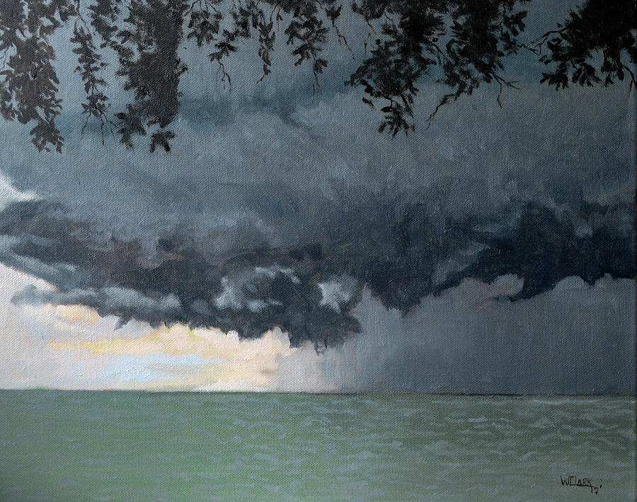 In coming storm-Epping forest on the lake by Wade Clark