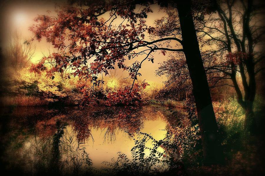 Autumn Photograph - In Dreams by Jacky Gerritsen