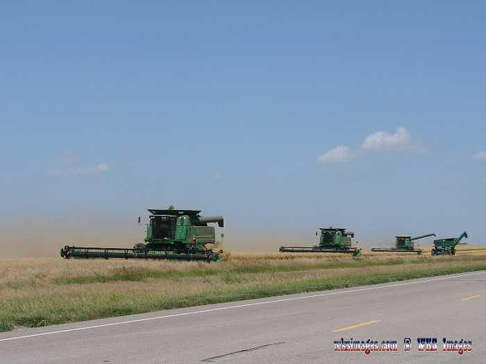 Wheat Harvest Photograph - In Full Swing-wheat Harvest 2007 by Stan Hutchins