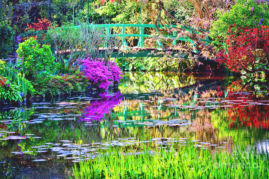 Giverny Photograph - In Giverny by Olivier Le Queinec