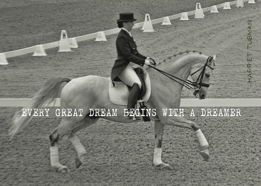 Horse Photograph - In Harmony Quote by JAMART Photography