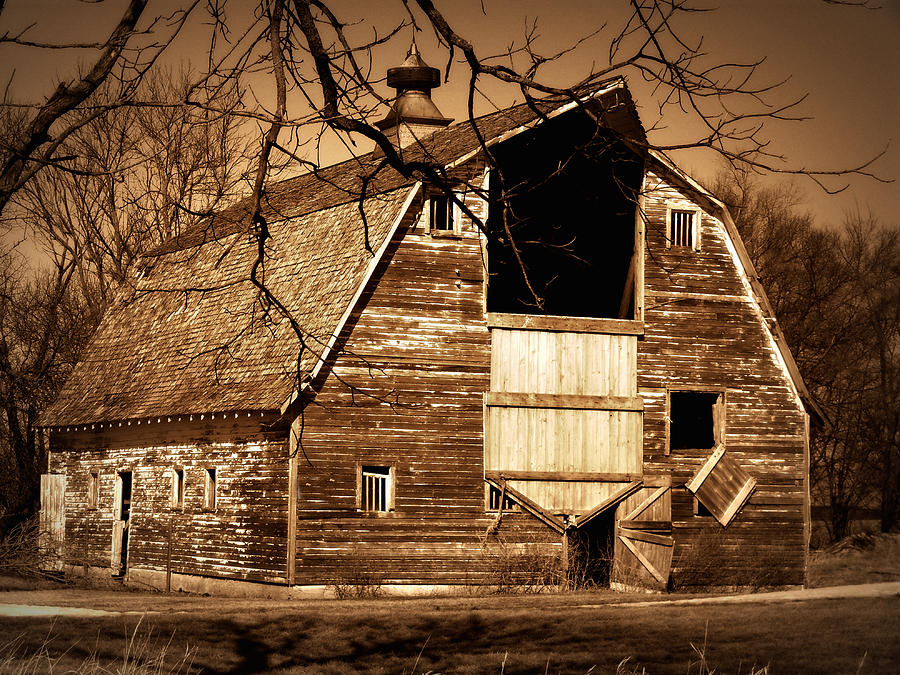 Barn Photograph - In Need by Julie Hamilton