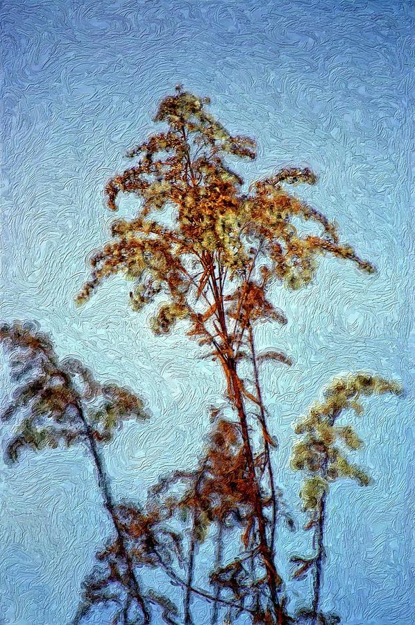 Weed Photograph - In Praise Of Weeds II by Steve Harrington