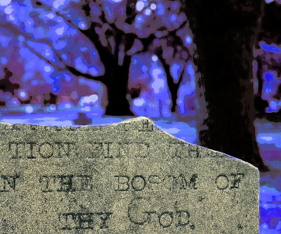 Trees Photograph - In The Bosom Of Thy God by Jill Tennison