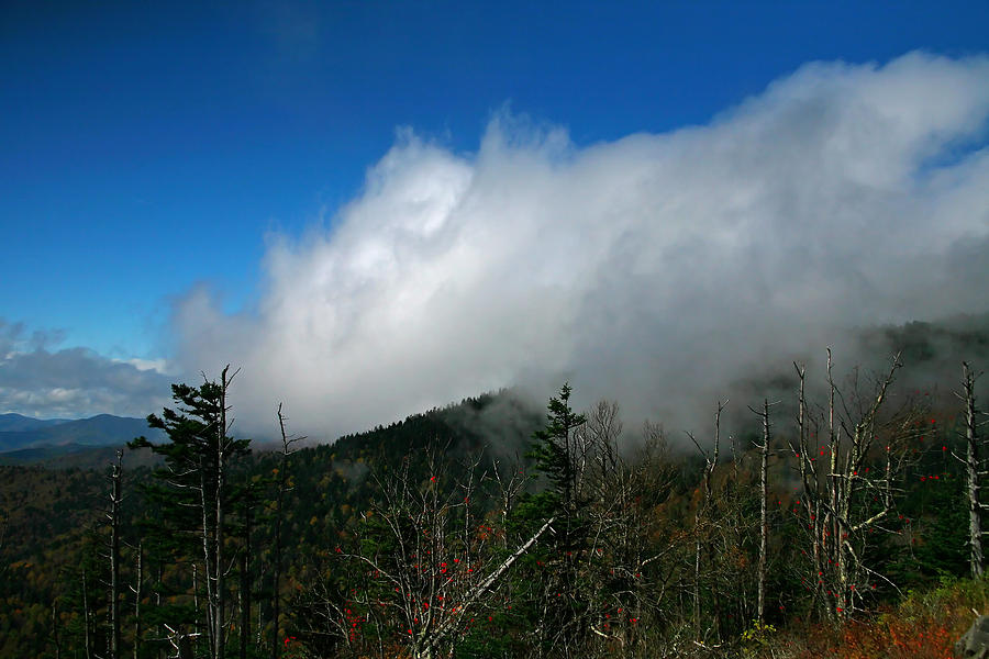Smokey Mountains Photograph - In The Clouds by James Jones