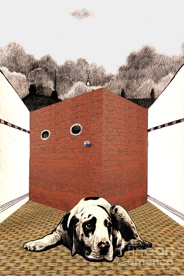 Brick Digital Art - In The Dog House  by Andy  Mercer