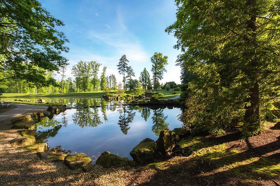 Arboretum Photograph - In The Early Morning Light by Tom Mc Nemar