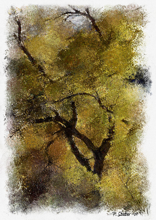 Trees Digital Art - In The Fall by Patricia Stalter
