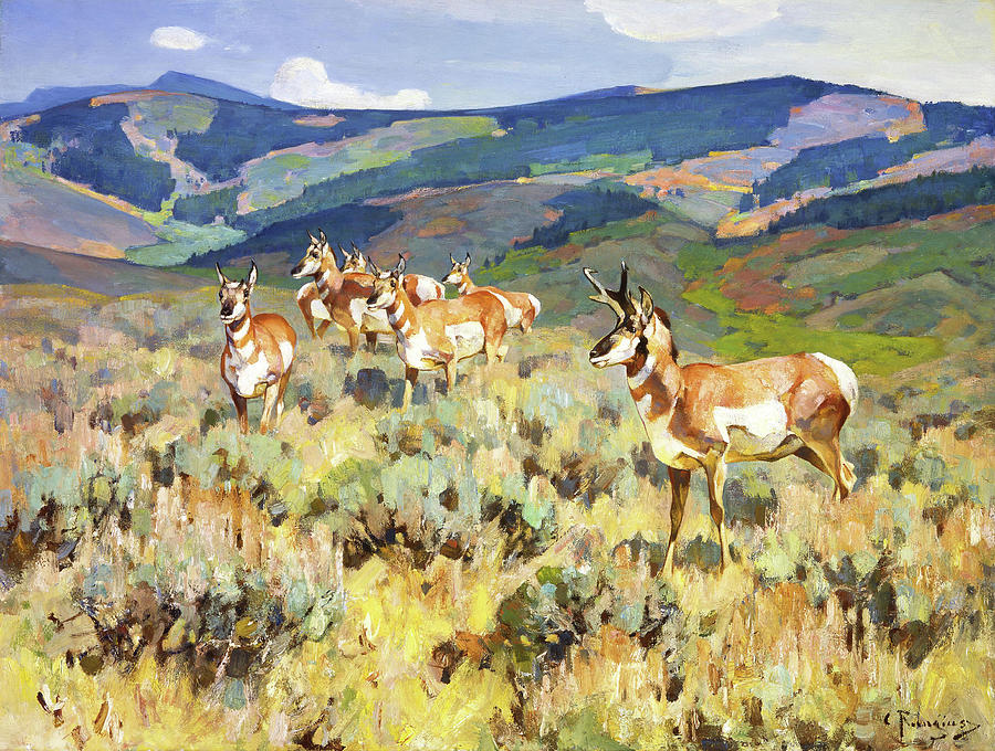 Antelope Painting - In The Foothills - Antelope by Rungius Carl
