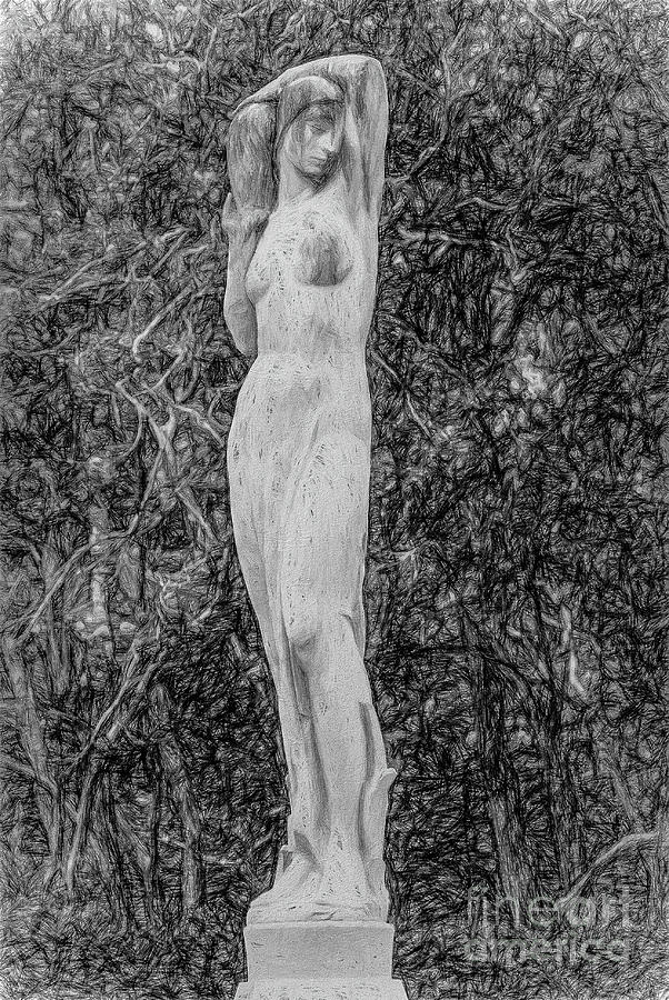 In The Garden - Pencil Sketch Photograph