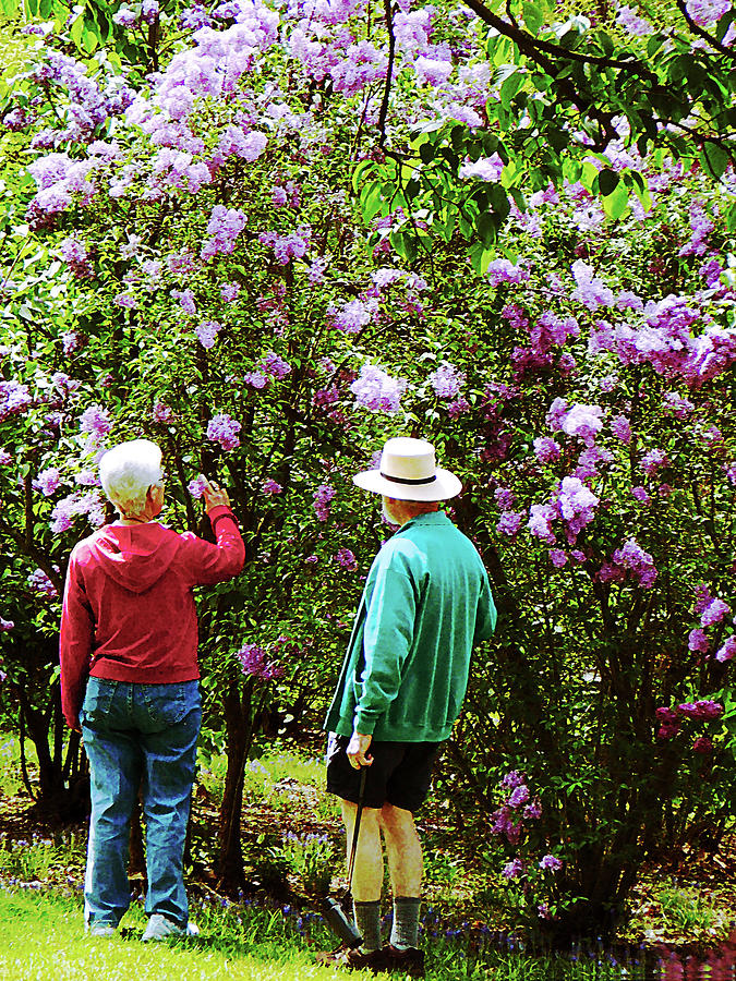 Spring Photograph - In The Lilac Garden by Susan Savad