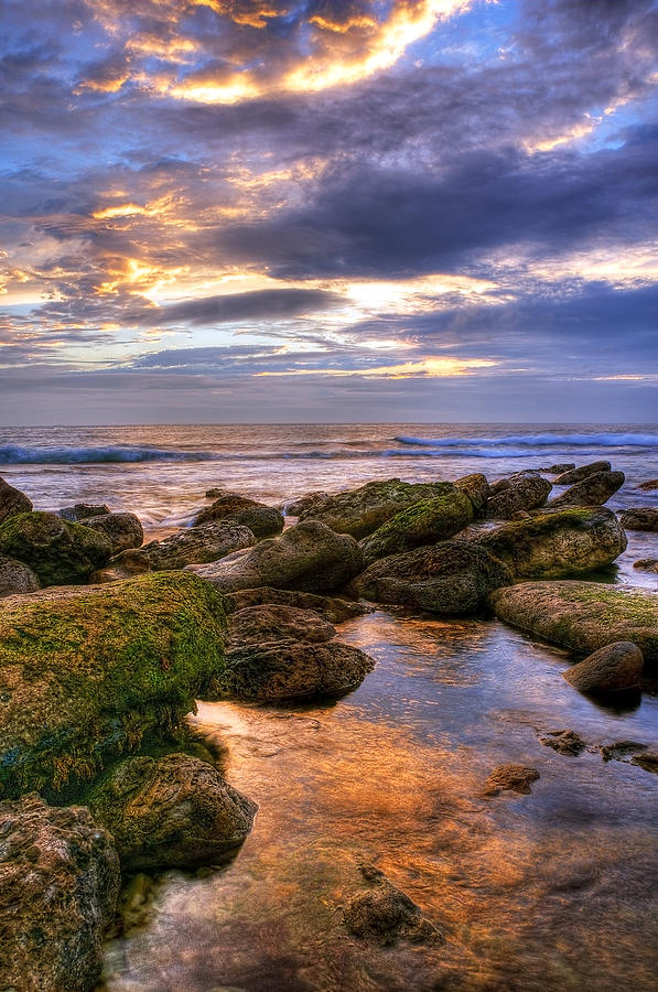 Aqua Photograph - In The Morning by Svetlana Sewell