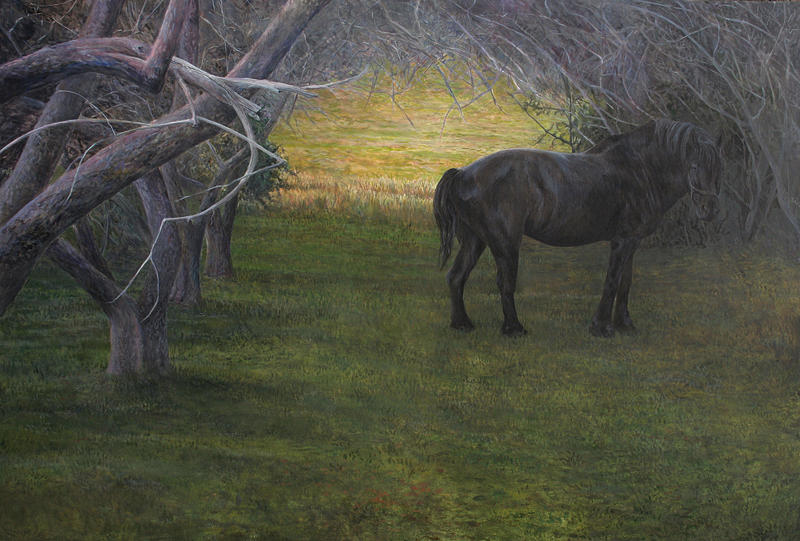 Light Painting - In The Orchard by Alan  Bateman