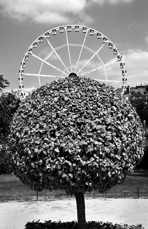 Paris Photograph - In The Round by Joe Tabacca