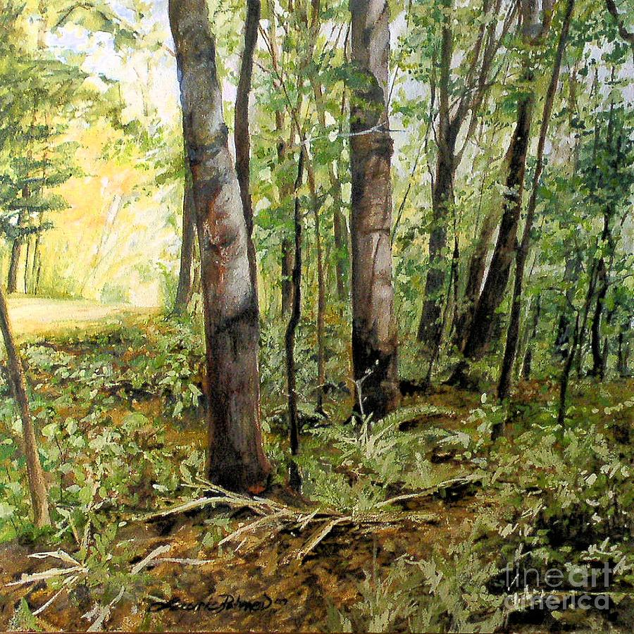 In the Shaded Forest  by Laurie Rohner