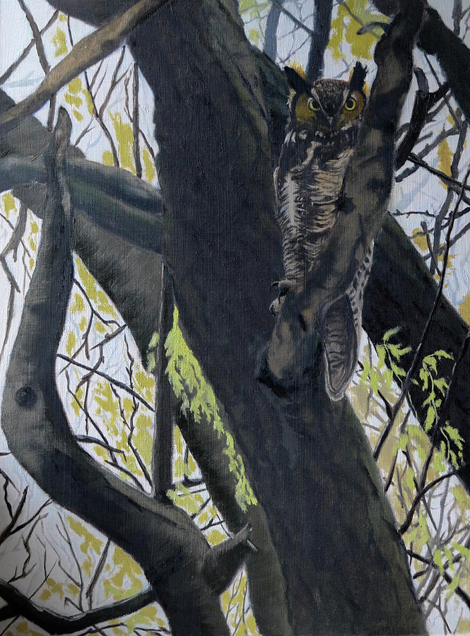 In the shadow-Ojibway great horn owl by Wade Clark