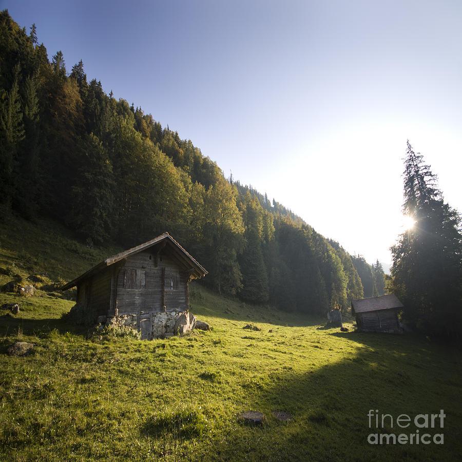 Alps Photograph - in the Swiss alps by Angel Ciesniarska
