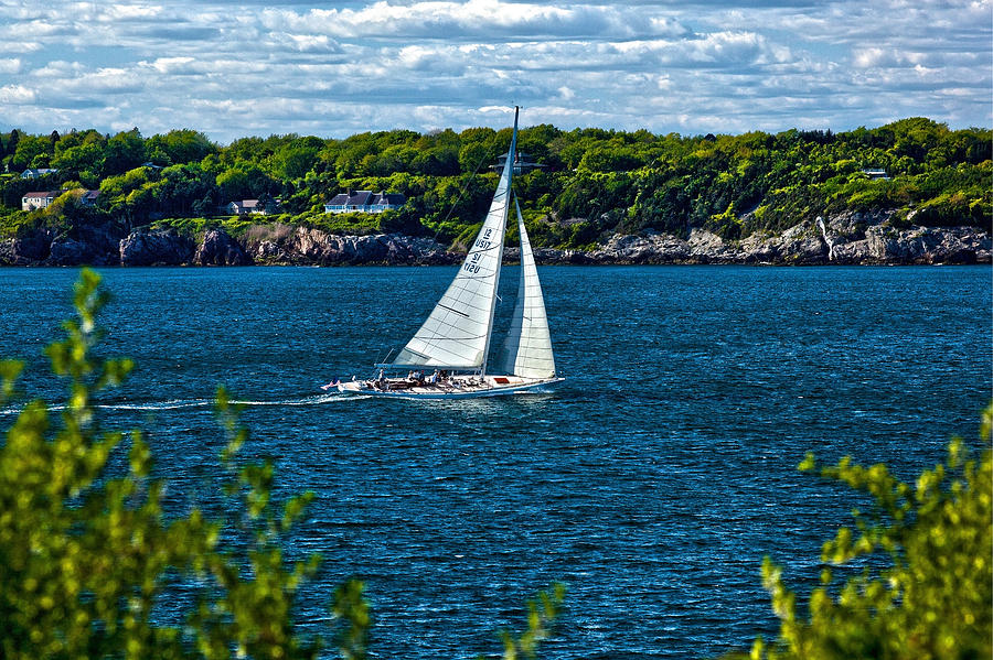 Rhode Island Photograph - In The Wind by Joel P Black