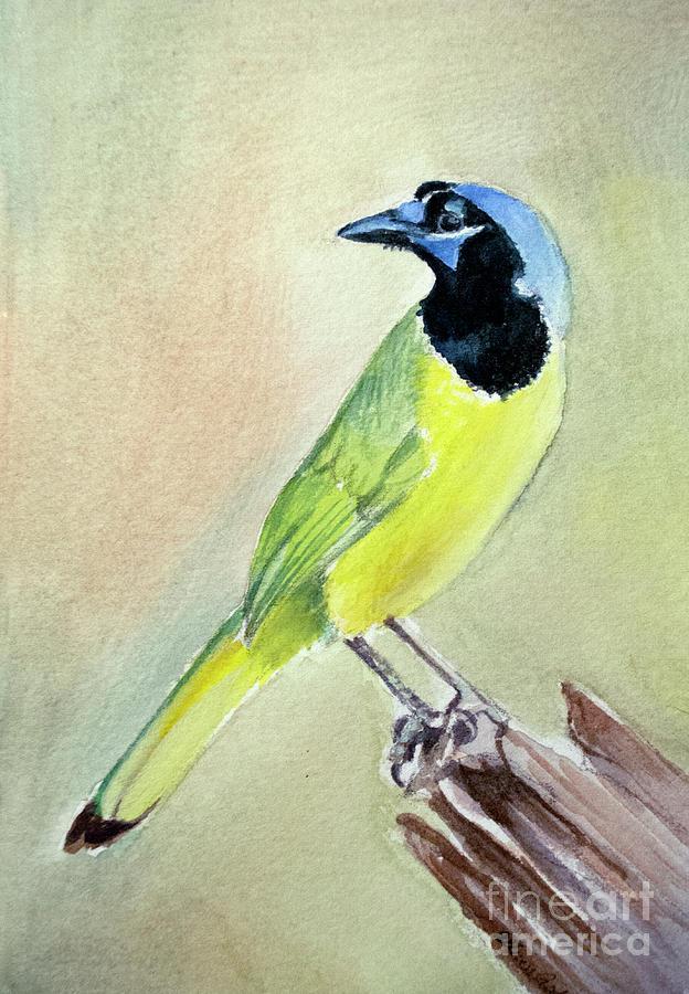 Inca Jay Painting
