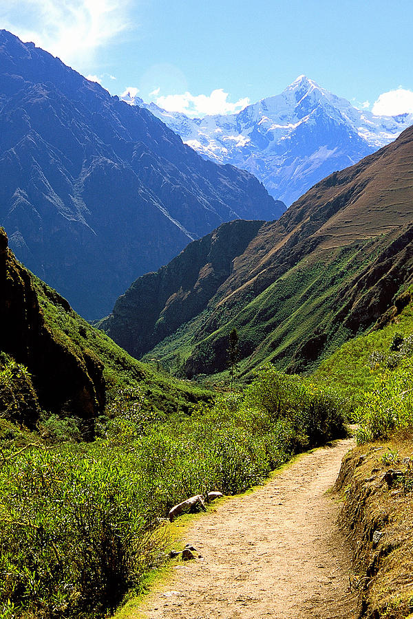 Inca Trail And Mt. Veronica Photograph by Alan Lenk