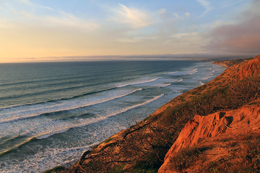 Torrey Pines Photograph - Incoming Fog At Torrey Pines by Robin Street-Morris