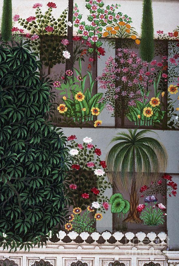 Aod Photograph - India: Garden by Granger