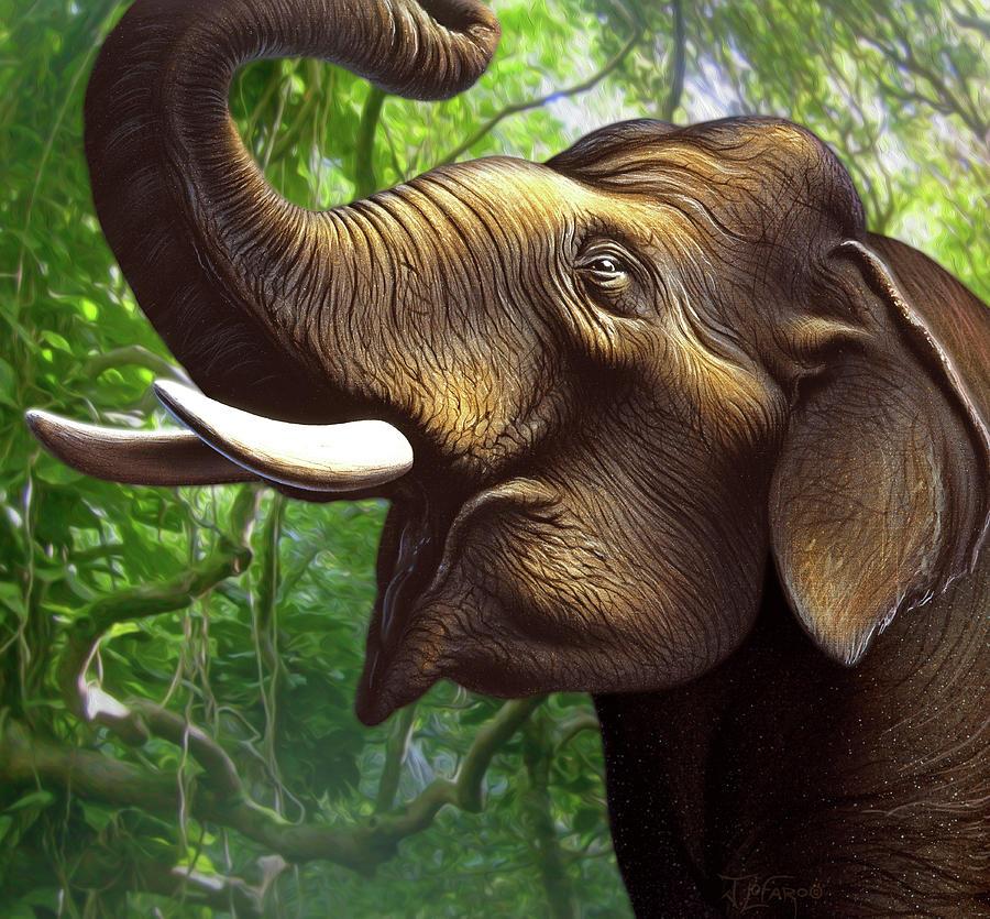 Elephant Painting - Indian Elephant 1 by Jerry LoFaro