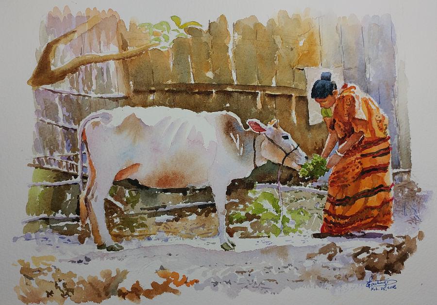 Indian Girl Feeding Cow