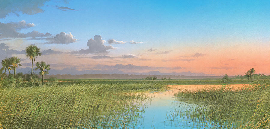 Florida Marsh Painting - Indian River by Mike Brown