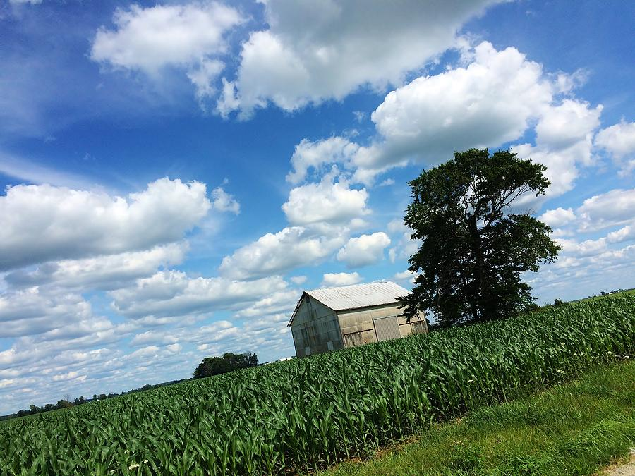 Red Photograph - Indiana Farm Scene by Ranchers Eye Photography