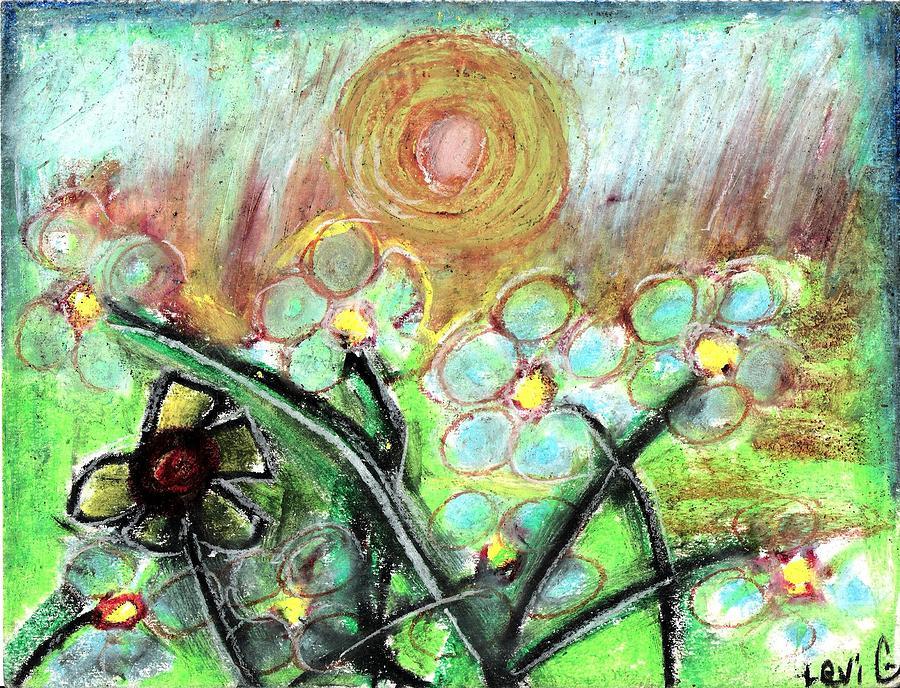 Daisy Pastel - Individuality  by Levi Glassrock