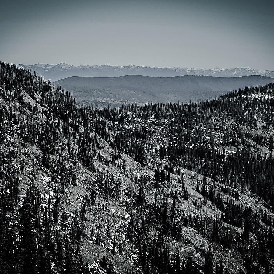 Infinite  Inculcation  Photograph by Dan Hassett