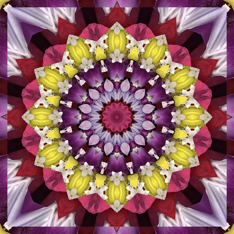 Mandalas Photograph - Infinity by Bell And Todd