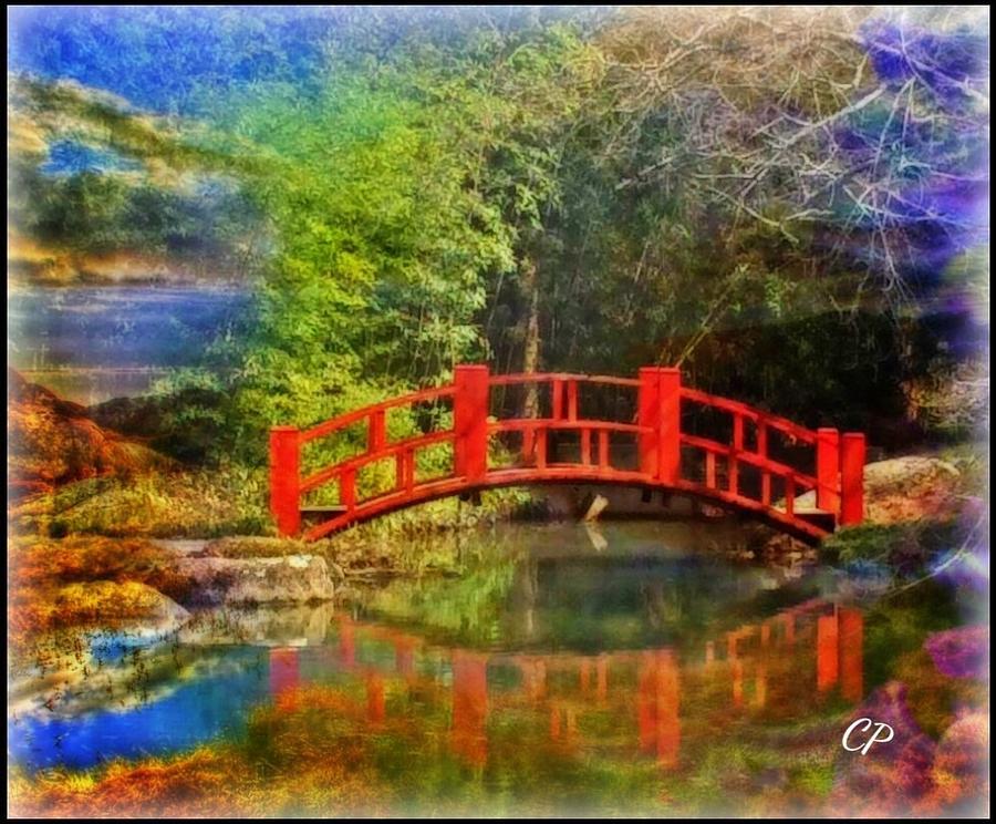 Inner bridges by Christine Paris