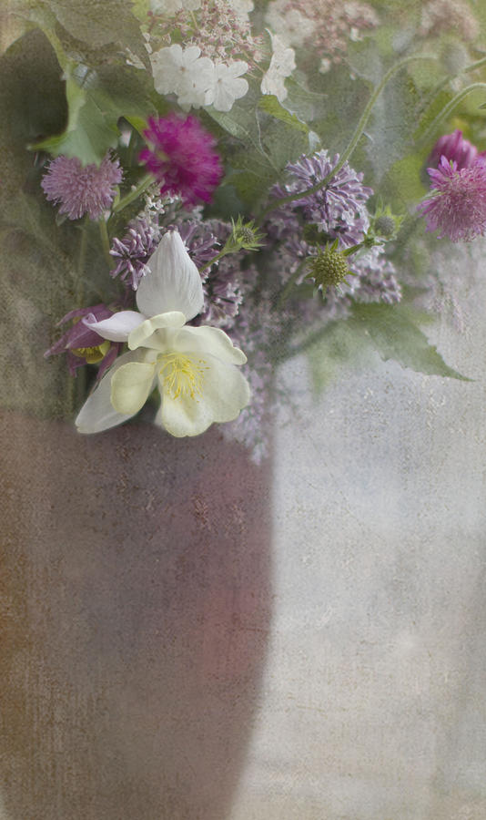 Flowers Photograph - Inner Glow by Rebecca Cozart