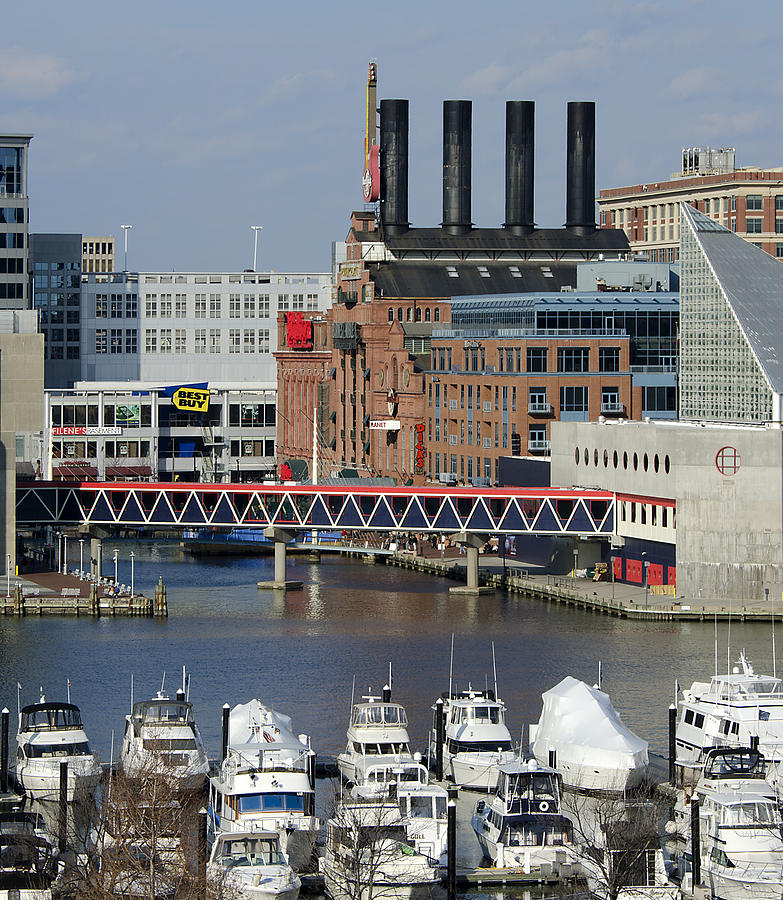 Baltimore Photograph - Inner Harbor - Baltimore - Maryland by Brendan Reals