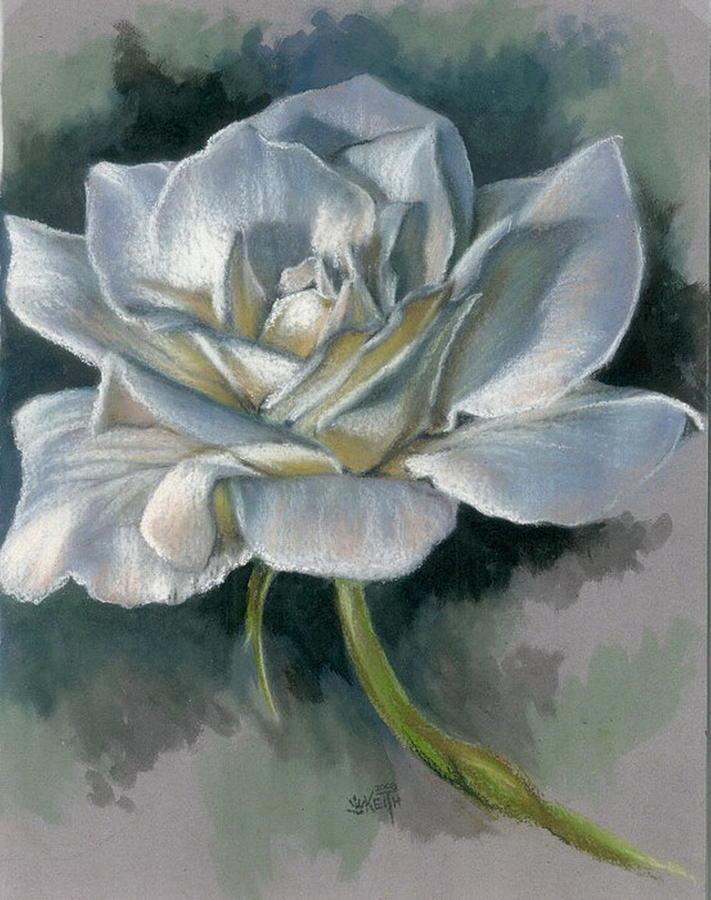 Rose Mixed Media - Innocence by Barbara Keith