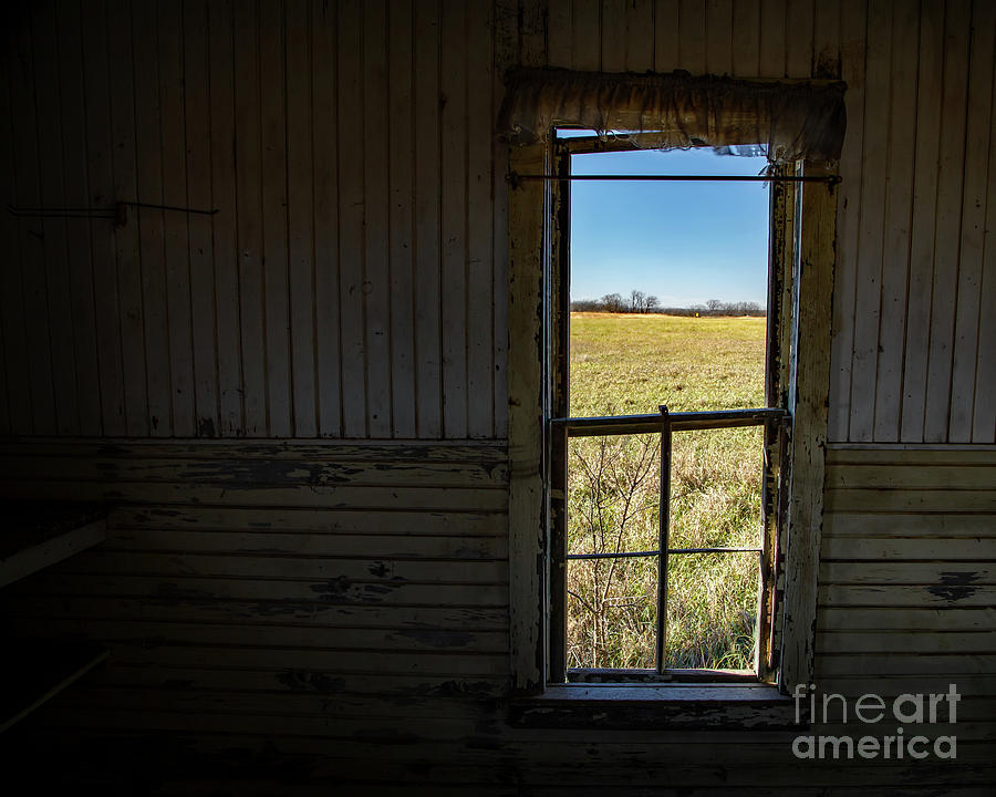 Inside Looking Out Photograph