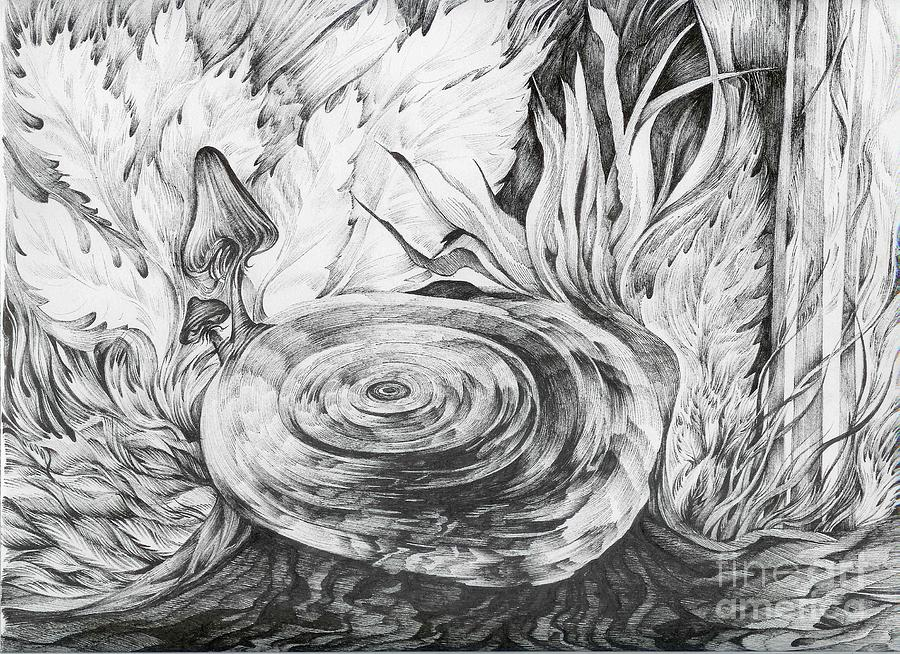 Tree Stump Drawing - Inside The Forest by Anna  Duyunova